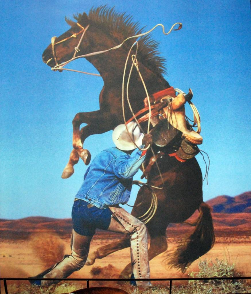 Cowboy_DSC_1355
